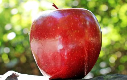 Foto van een appel